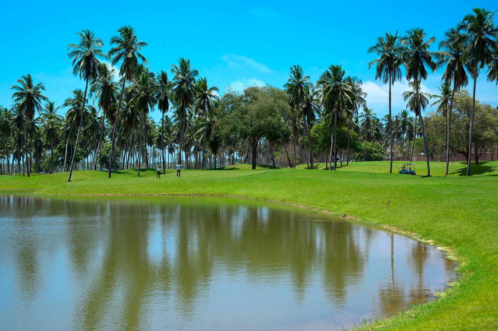 Golf_2 (Large)