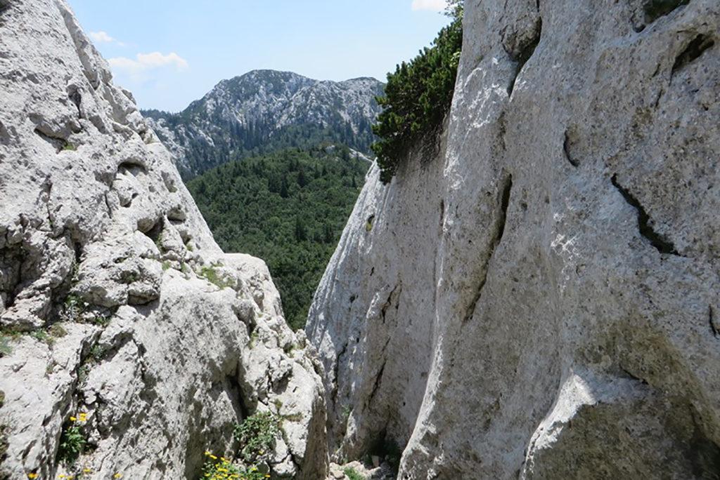 Velebit mountain