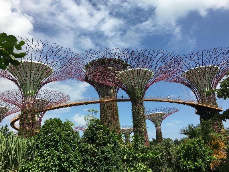 Serbian Travel Agents Fam Trip To Singapore Magic4 Club