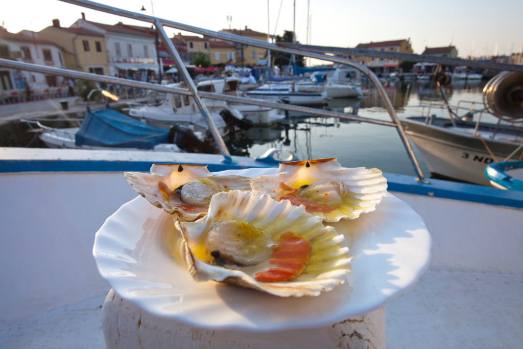 sea_food_novigrad_top_gastro_destination