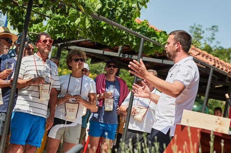 novigrad_cittanova_wine_trail